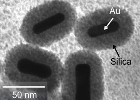 Matsuura-nano-devices-for-cancer-treatment